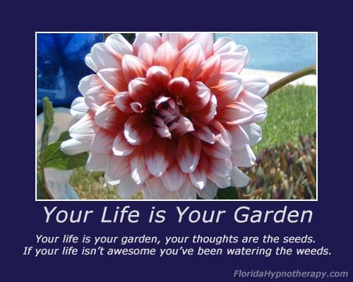 life-garden[1]
